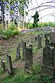 Dolní Žandov, Úbočí, gravestones in Jewish cemetery.jpg