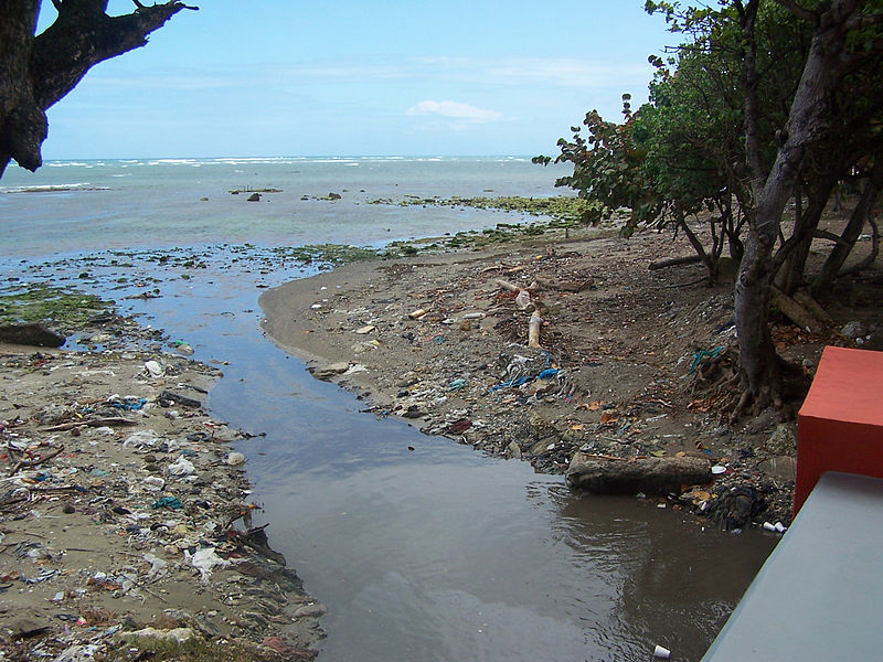 File:Dominican Republic - trashed beach.JPG