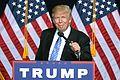 Donald Trump (29347093266).jpg