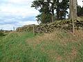 Drystone wall at Billa Barra Local Nature Reserve - geograph.org.uk - 41175.jpg