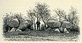Dubbelgånggriften i Snarringe, Hammarlöv sn, Skåne (Montelius, Kulturgeschichte Schwedens (1906) s001).jpg