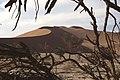 Dunst Namibia Oct 2002 slide143 - Abendstimmung.jpg