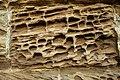 Dunstanburgh Castle. - geograph.org.uk - 428625.jpg