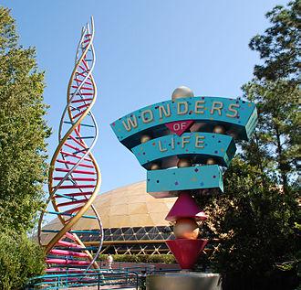 Wonders of Life - Image: EPCOT Wonders of Life
