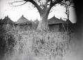 ETH-BIB-Dorf in Afrika-Tschadseeflug 1930-31-LBS MH02-08-0869.tif