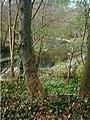 Edw River near Aberedw - geograph.org.uk - 91564.jpg