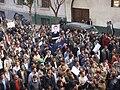 Egyptian Revolution of 2011 03343.jpg