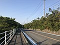 Ehime Prefectural Road No.21 on east side of Mimura Pass 2.jpg