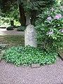 Ehrengrab Franz Treller (Friedhof Wehlheiden).jpg