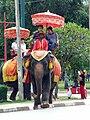 Elephant ayuthaya.jpg