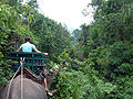 Elephant ride in Chiang Rai Province 2007-05 14.JPG