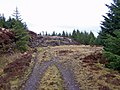 End of the track - geograph.org.uk - 1712786.jpg