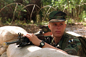 Estonian Soldier DM-SD-02-00619