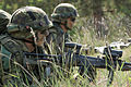 Estonian soldiers wait to move forward during an attack as part of Saber Strike 2013 June 7, 2013, in Adazi, Latvia 130607-O-ZZ999-005.jpg