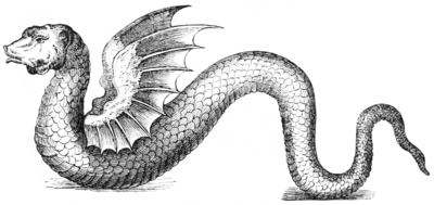 Ethiopian Dragon after Owen 1741 (transparent).png