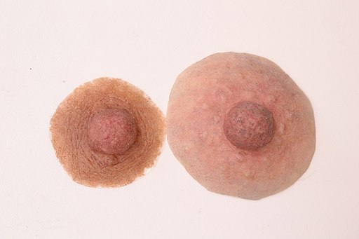 Examples of Custom Nipple Prostheses