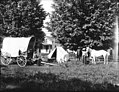 Ezra Meeker's camp with covered wagon, tent, and horses in yard, Oregon, ca 1913 (BAR 229).jpeg