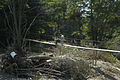 FEMA - 8194 - Photograph by Liz Roll taken on 06-24-2003 in West Virginia.jpg