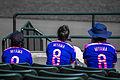FIFA Women's World Cup 2015 fans.jpg