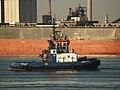 Fairplay III (tugboat, 2007) IMO 9365116, Calandkanaal pic1.JPG