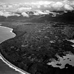 Fairweather Glacier, trees covering kettle depressions, September 16, 1966 (GLACIERS 5448).jpg