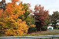 Fall Foliage in Laurel Mountains - panoramio (7).jpg