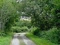 Farm lane near Tregaron, Ceredigion - geograph.org.uk - 1438806.jpg