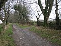 Farm track - geograph.org.uk - 650091.jpg