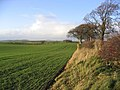 Farmland near Whitmuirhaugh - geograph.org.uk - 288130.jpg