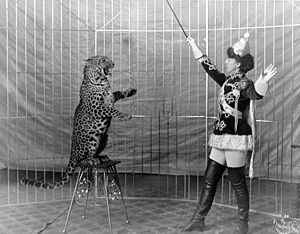 Female animal trainer and leopard.