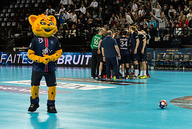 Final4 2016 PSG-Montpellier 0551.jpg
