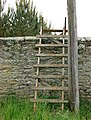 Fire ladder, wall of Hulne Park - geograph.org.uk - 1363365.jpg
