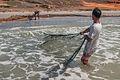 Fishing in El Manglillo Bay, Margarita Island 06.jpg