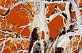 Flamboyant fusion - panoramio.jpg