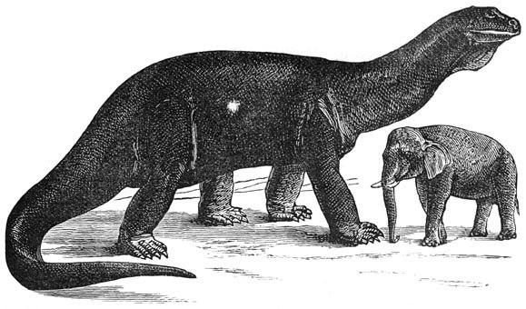 Flammarion atlantosaurus