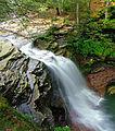Flickr - Nicholas T - Lewis Falls (1).jpg