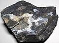 Flint (Vanport Flint, Middle Pennsylvanian; Nethers Flint Quarries, Flint Ridge, Ohio, USA) 231.jpg