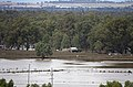 Flood waters on the Murrumbidgee flood plains in North Wagga, viewed from Franklin Drive in Estella (6).jpg