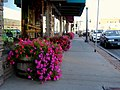 Flower Street View Elko Nevada - panoramio.jpg