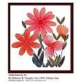 Flowers - panoramio - Behrooz Rezvani.jpg