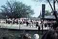 Folk dancing skansen.jpg