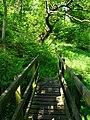Footbridge over the Burn, Twizell - geograph.org.uk - 455739.jpg