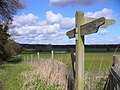 Footpath By Old Park Farm, Kingsley - geograph.org.uk - 352642.jpg