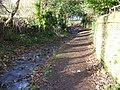 Footpath by the stream - geograph.org.uk - 1603946.jpg