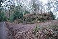 Footpath off Luccombe Lane - geograph.org.uk - 1660454.jpg