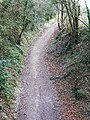 Former MandSWR trackbed, Marlborough - geograph.org.uk - 1225718.jpg