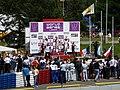 Formula Renault 3.5 Series, 2010 Brno WSR (59).jpg