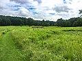 Fort Necessity National Battlefield (e855653b-f46d-4d75-862f-459d0958b4e0).jpg