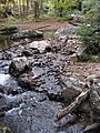 Fox Creek (west of Troutdale, Virginia, USA) 2 (30441613695).jpg