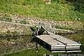 Foz do Rio Távora - Portugal (14435091176).jpg